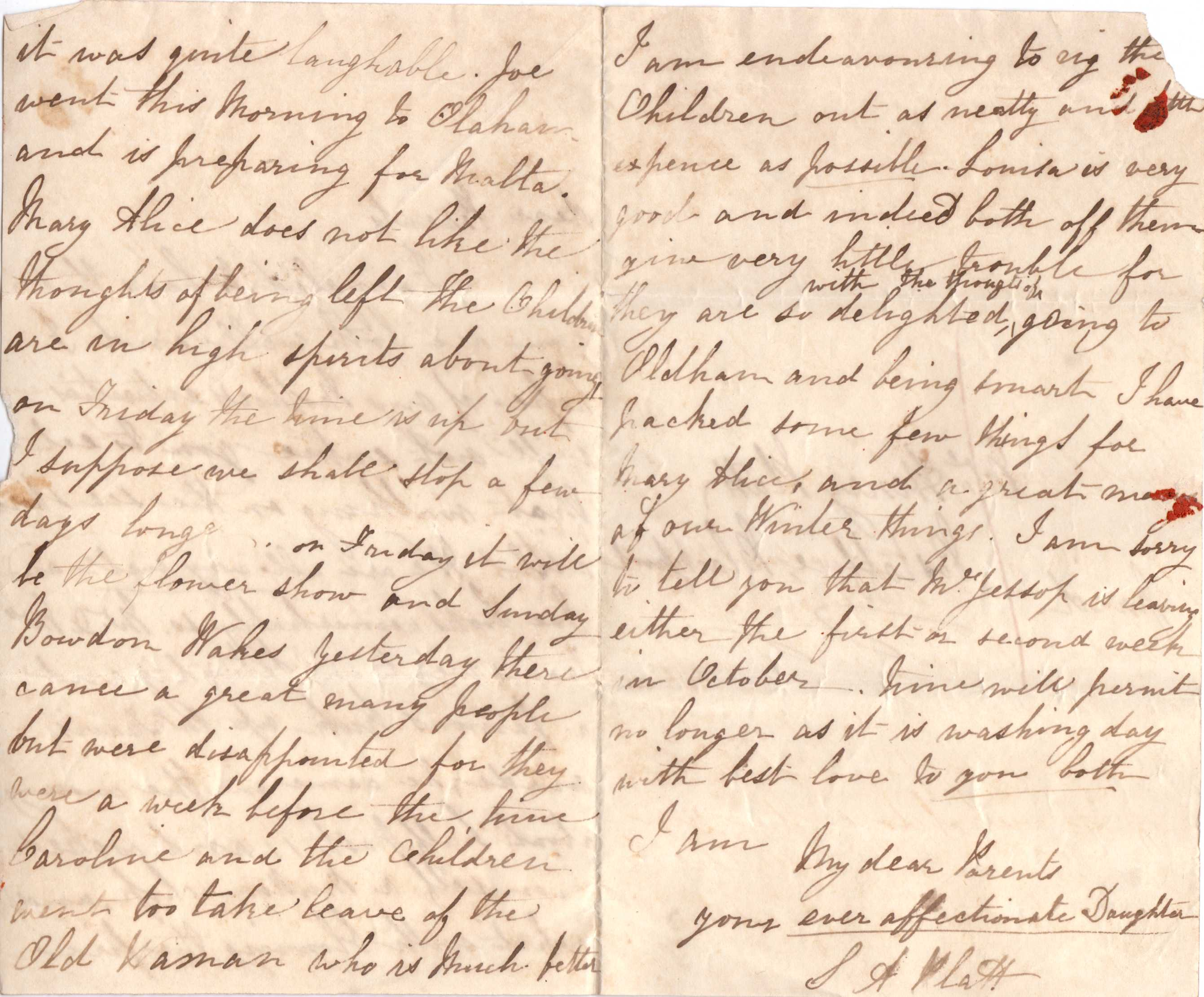 Terrific Letters From Sarah Anne Platt Born 1825 Easy Diy Christmas Decorations Tissureus